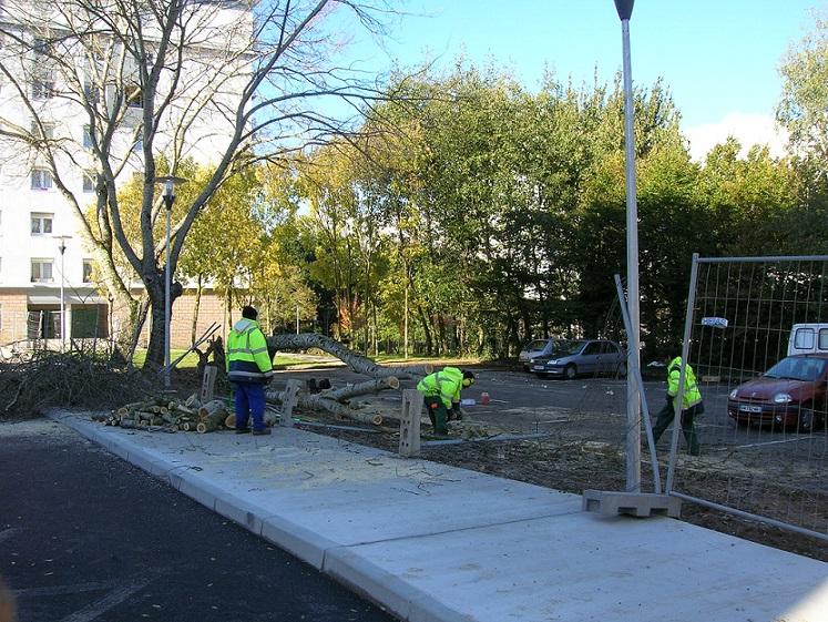 Evacuation d 39 un arbre par les salari s sur le chantier for Chantier espace vert